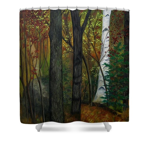Quiet Autumn Woods Shower Curtain