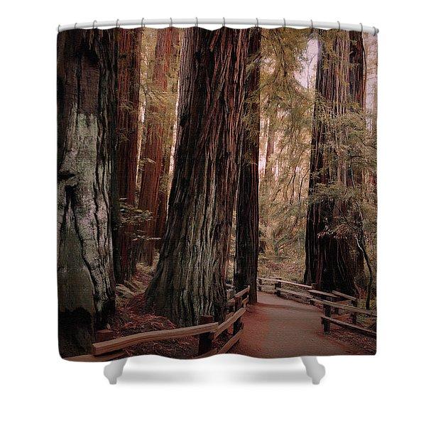Quiet Walk Shower Curtain