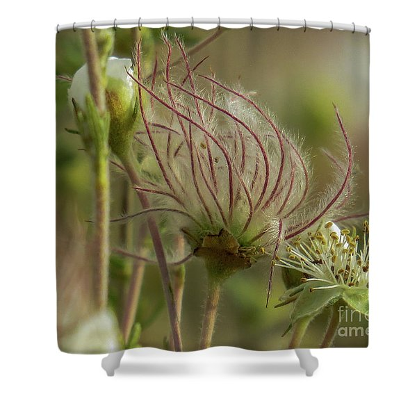 Quirky Red Squiggly Flower 2 Shower Curtain