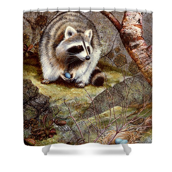 Raccoon Found Treasure  Shower Curtain