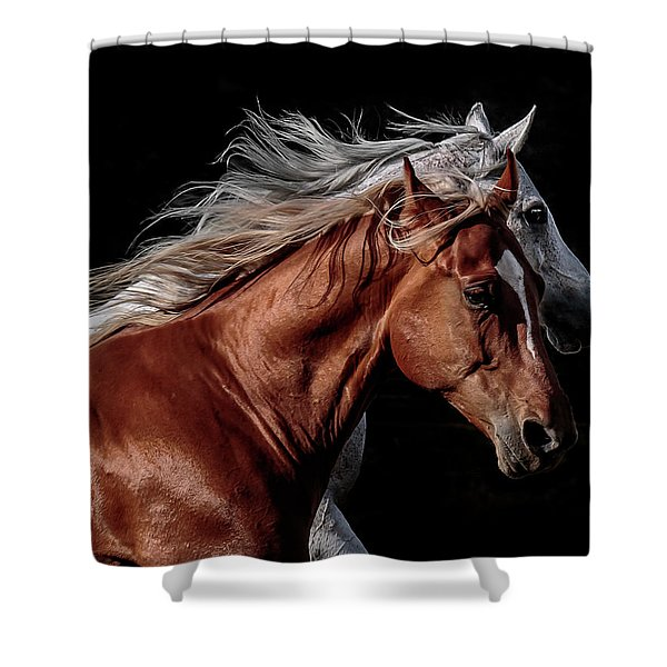 Racing With The Wind Shower Curtain