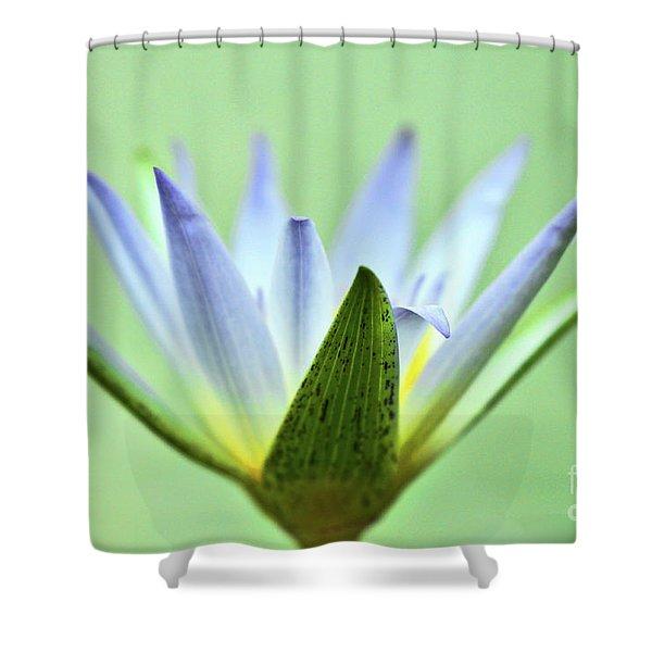 Radar Dish Shower Curtain