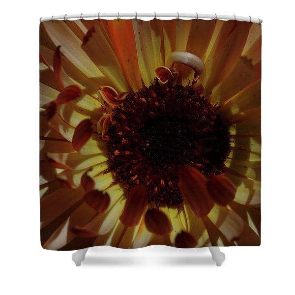 Radiant Calendula Shower Curtain