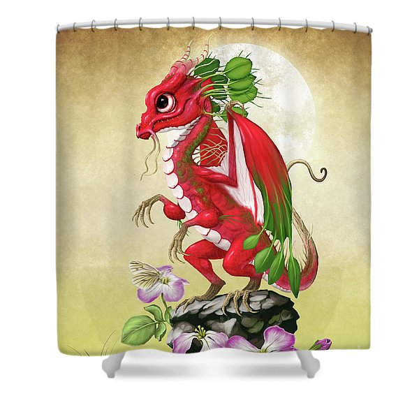 Radish Dragon Shower Curtain