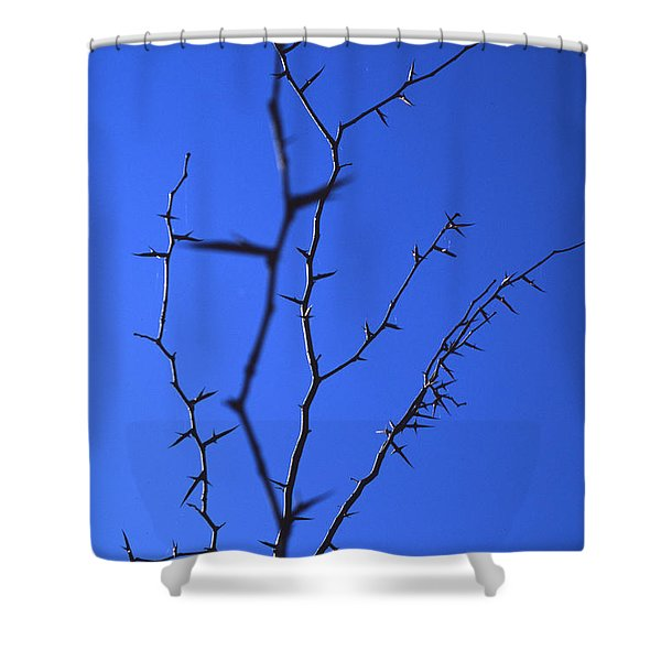 Ragged Edges Shower Curtain