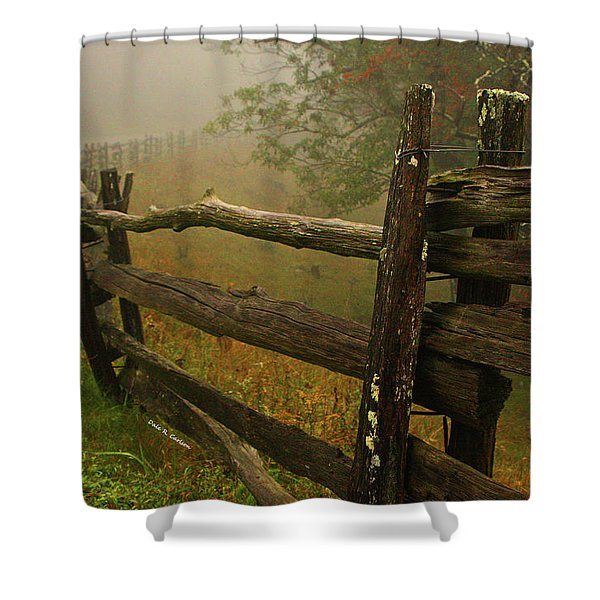Rails Of Time Shower Curtain