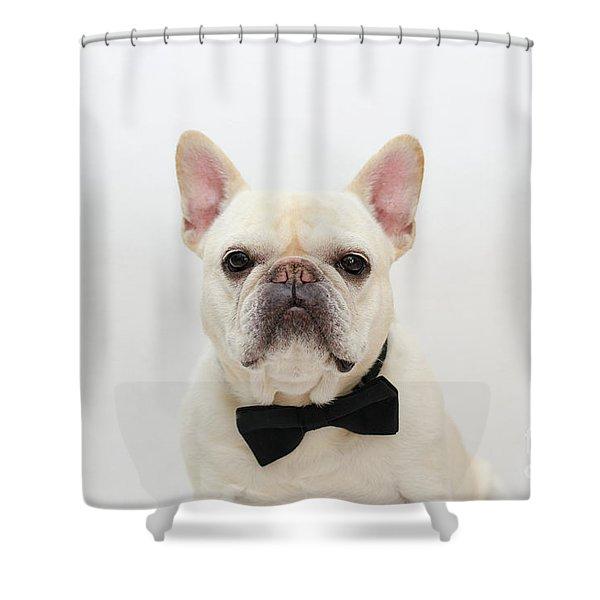 Raimy 1 Shower Curtain