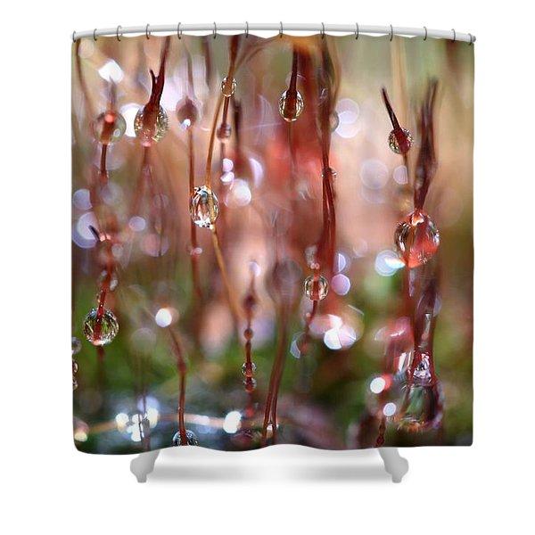 Rain Catcher Shower Curtain