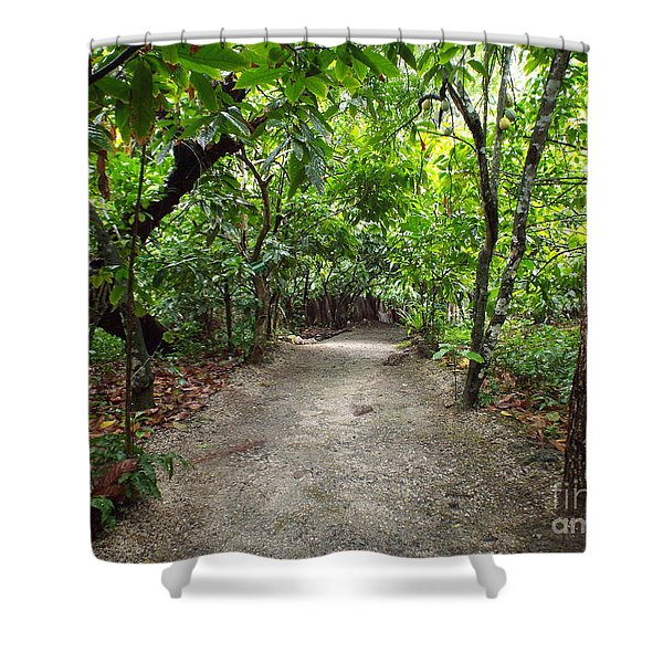 Rain Forest Road Shower Curtain