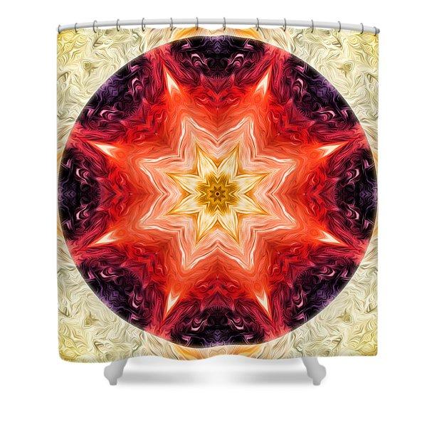 Rainbow Burst Mandala Shower Curtain