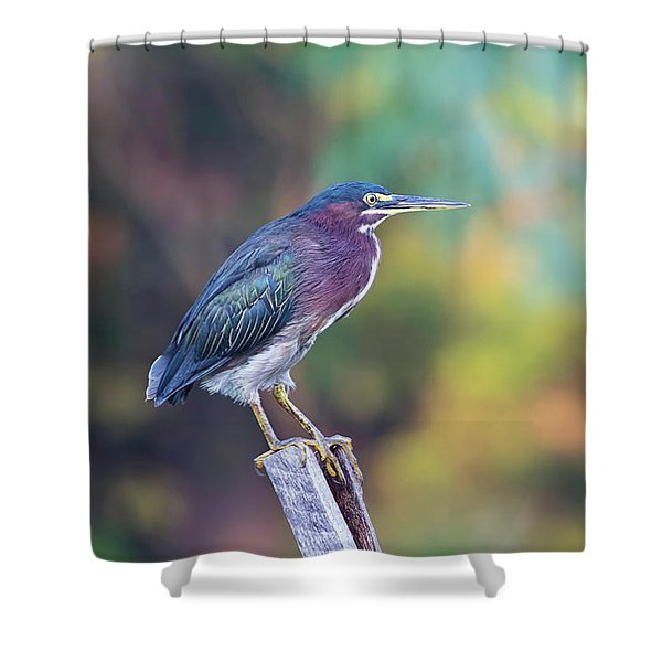 Rainbow Heron Shower Curtain