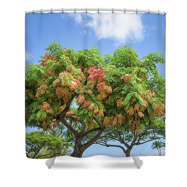Shower Curtain featuring the photograph Rainbow Shower Tree 1 by Jim Thompson