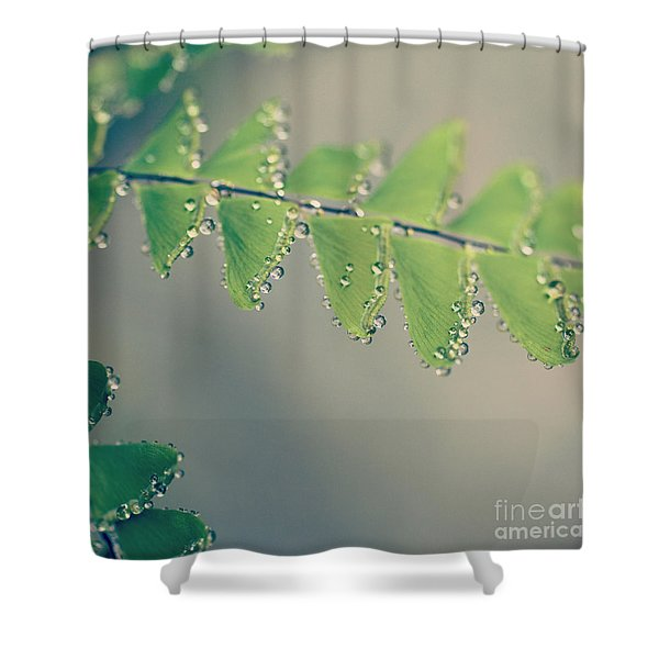 Raindrops On Ferns - Hipster Photo Square Shower Curtain