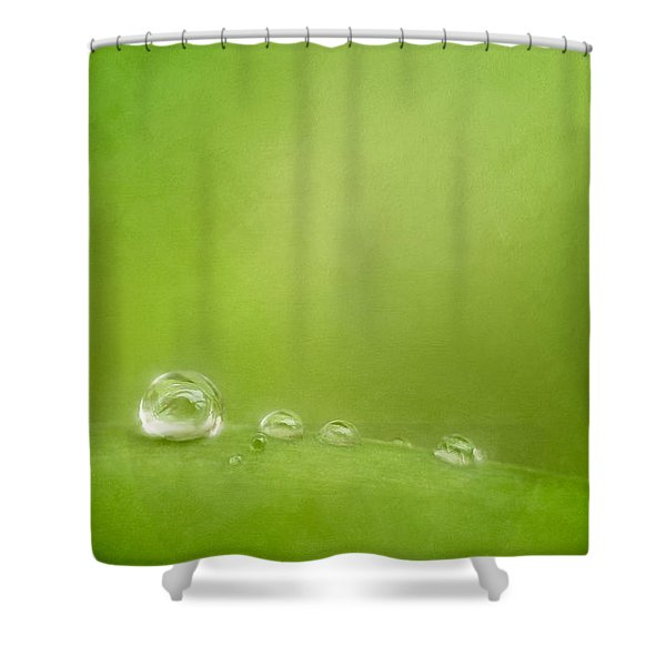 Raindrops On Green Shower Curtain