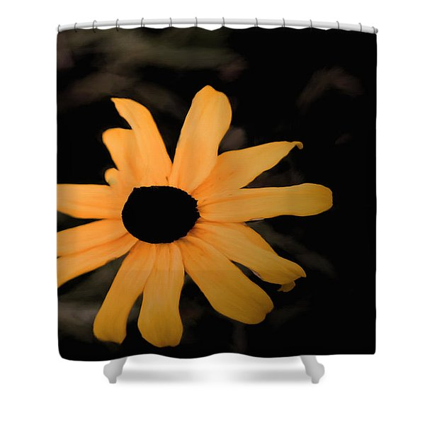 Rainy Day In The Black Hills Shower Curtain