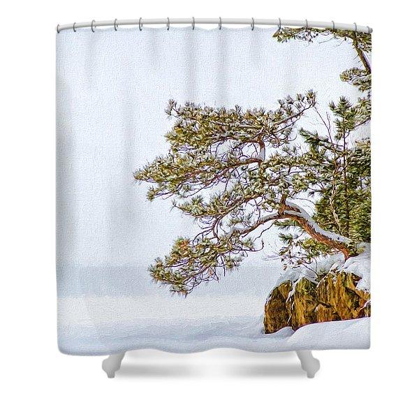 Rainy Lake Pine Shower Curtain