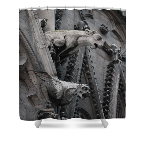 Ram And Eagle Griffon Notre Dame Shower Curtain