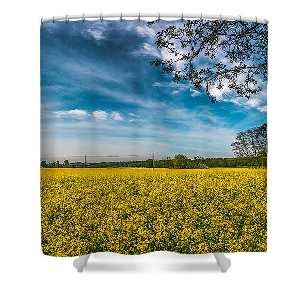 Rapeseed Field Shower Curtain