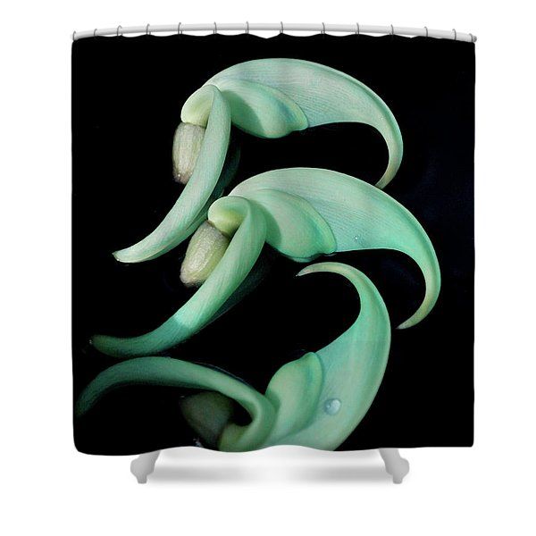 Rare Orchid Petals Shower Curtain