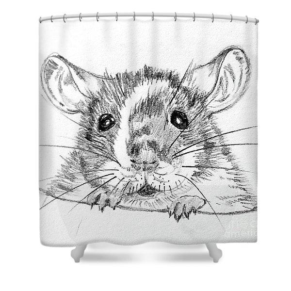 Rat Sketch Shower Curtain