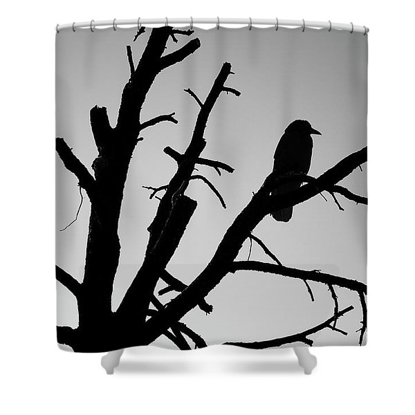 Raven Tree II Bw Shower Curtain