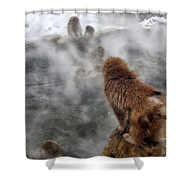Ready For The Plunge Shower Curtain