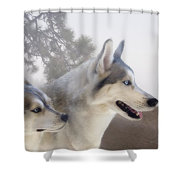 Ready Forthe Chase Shower Curtain