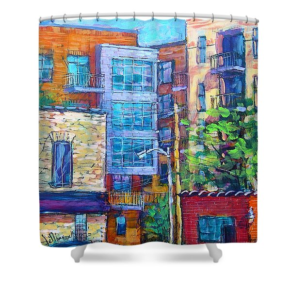 Rear Windows Shower Curtain