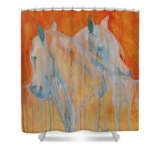 Reciprocity Shower Curtain