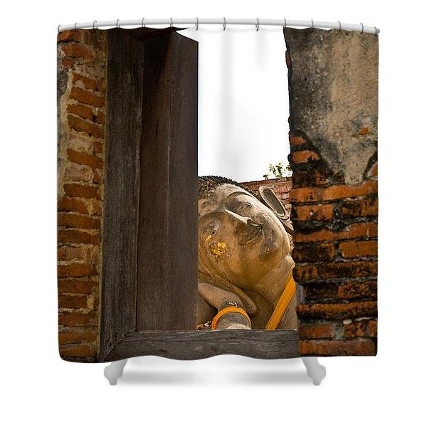 Reclining Buddha View Through A Window Shower Curtain