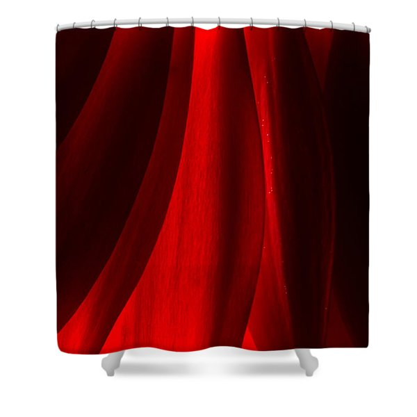 Red Abstract Of Chrysanthemum Wildflower Shower Curtain