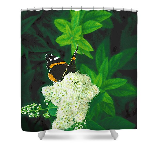Red Admiral On Spirea Shower Curtain