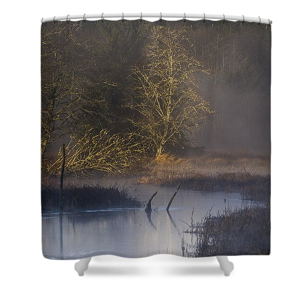 Red Alder Along Colewort Creek Shower Curtain