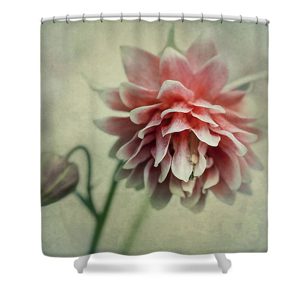 Shower Curtain featuring the photograph Red And Pink Columbine by Jaroslaw Blaminsky