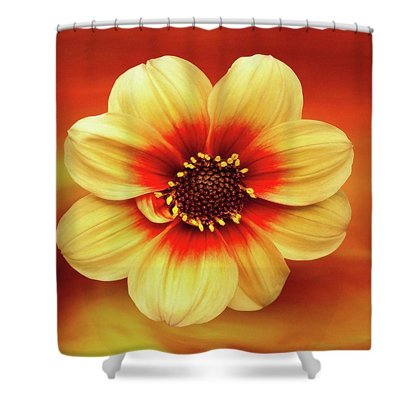 Red And Yellow Inspiration Shower Curtain