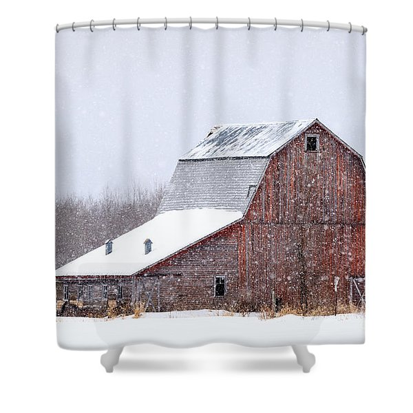 Red Beauty In Snow Shower Curtain