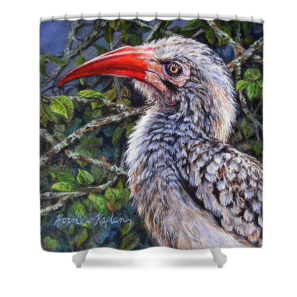 Red Billed Hornbill Shower Curtain