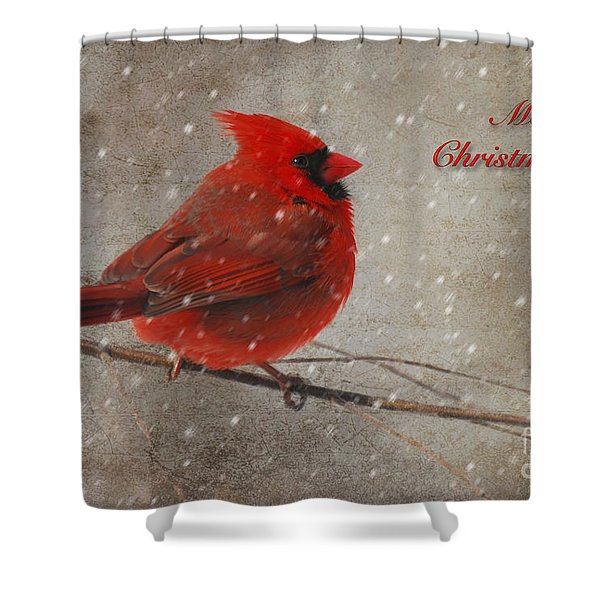 Red Bird In Snow Christmas Card Shower Curtain