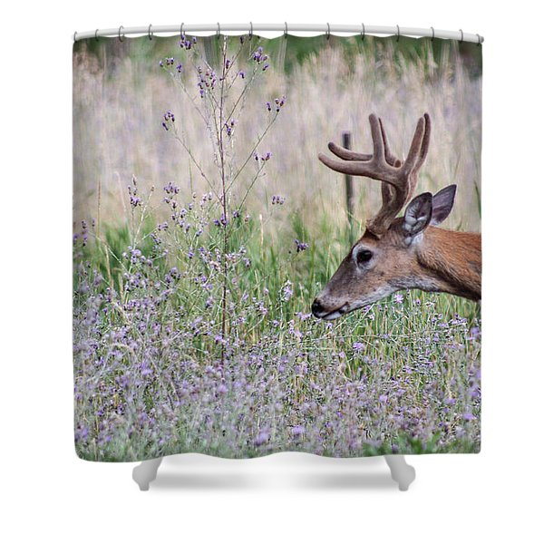 Shower Curtain featuring the photograph Red Bucks 4 by Antonio Romero