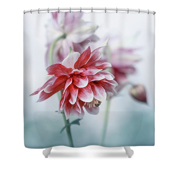 Shower Curtain featuring the photograph Red Columbines by Jaroslaw Blaminsky