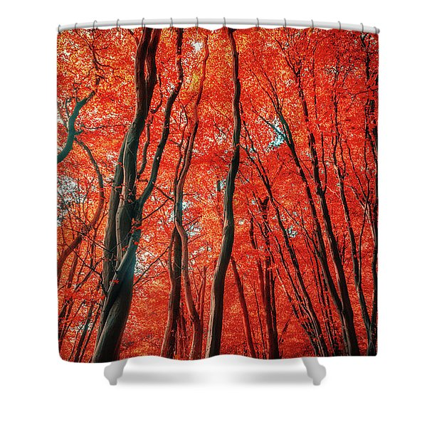 Red Forest Of Sunlight Shower Curtain