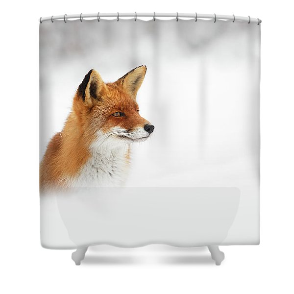 Red Fox Out Of The Blue Shower Curtain