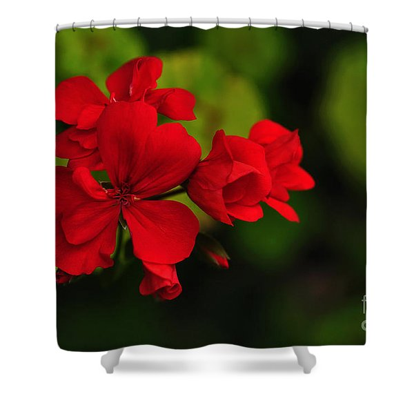 Red Geranium Shower Curtain by Kaye Menner