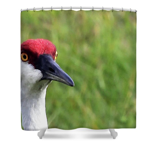 Red Headed Crane Shower Curtain