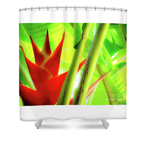 Red Heliconia Shower Curtain