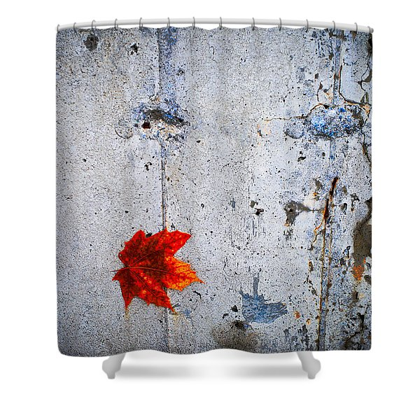 Red Leaf Shower Curtain