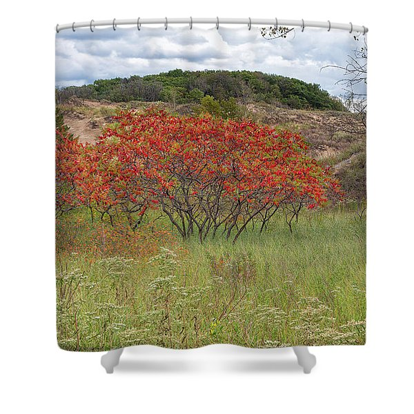 Red Leaves On Grassy Dunes Shower Curtain