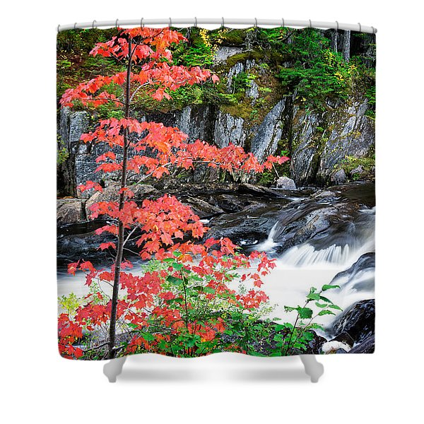 Red Maple Gulf Hagas Me. Shower Curtain