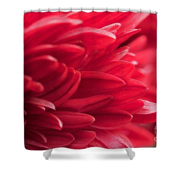 Red Mum Shower Curtain