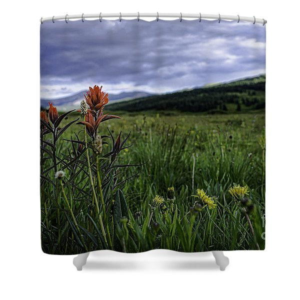 Red Paintbrush Shower Curtain